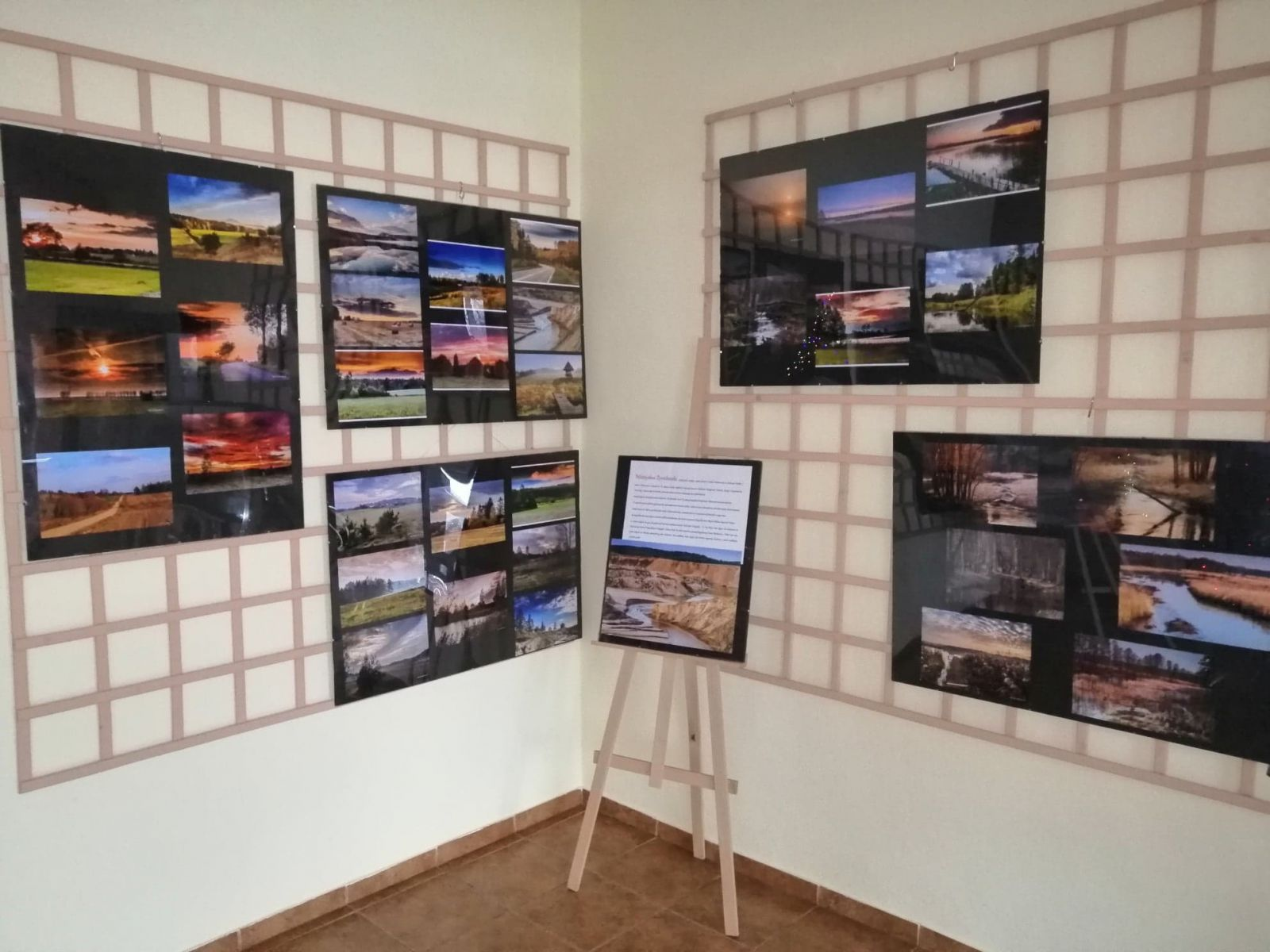 Wystawa fotografii.